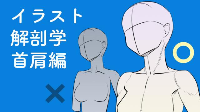 イラストに活かす解剖学講座首肩