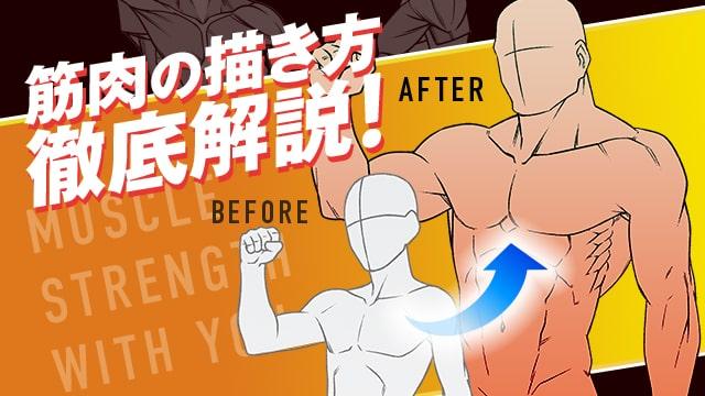 理想のカラダを描く筋肉の描き方講座